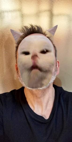 http://www.marcosignorini.it/files/gimgs/23_1marcosignoriniinfected-selfie9.jpg