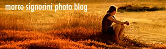 Marco Signorini Photoblog